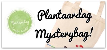 Plantaardag Mystery-Bag
