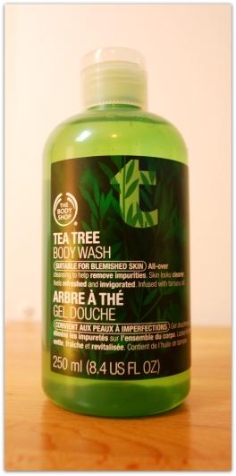 Tea Tree 5