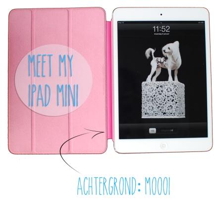 Ipad app mini blog